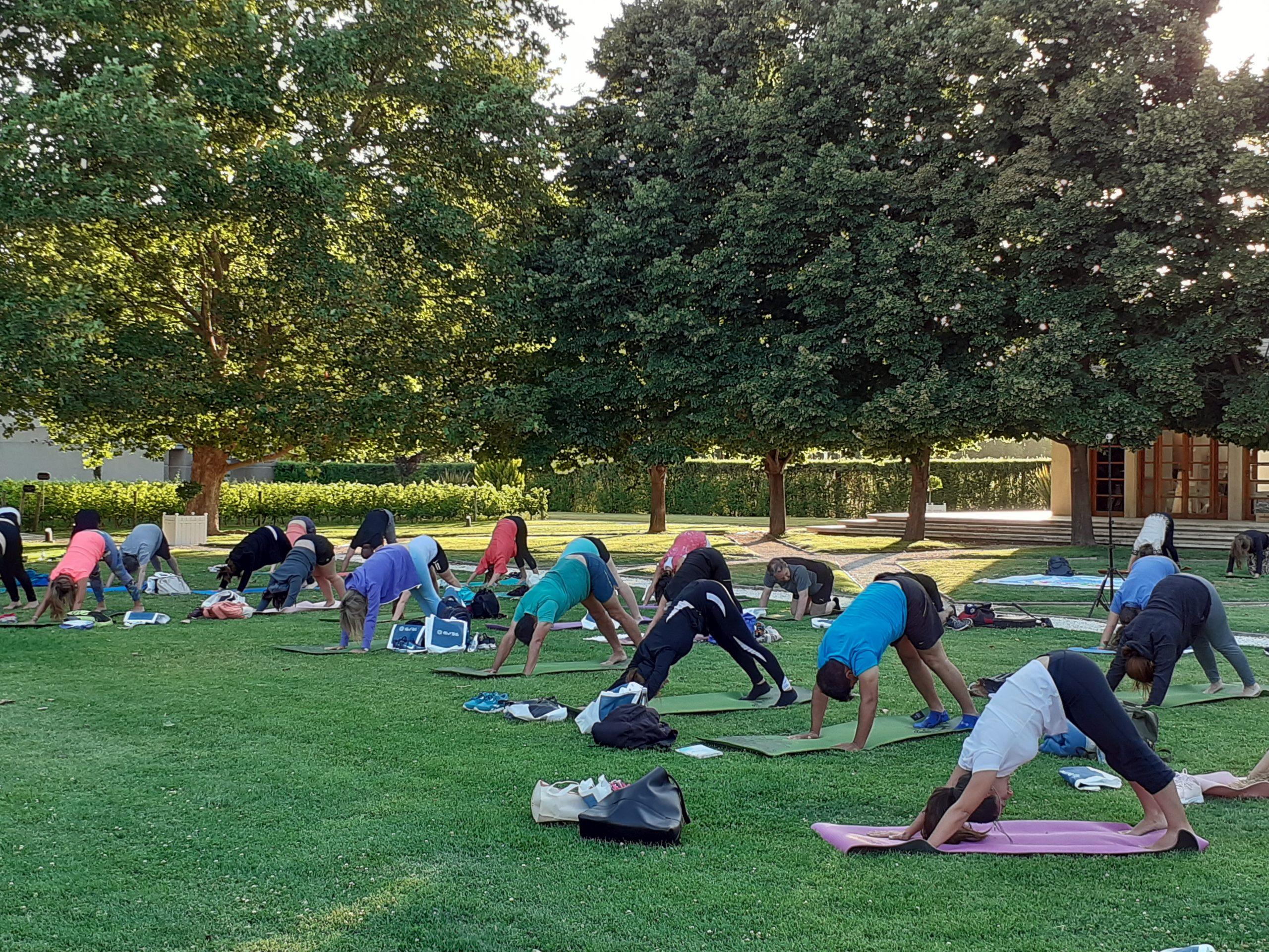 yoga-por-los-caminos-del-vino_20201219_195504