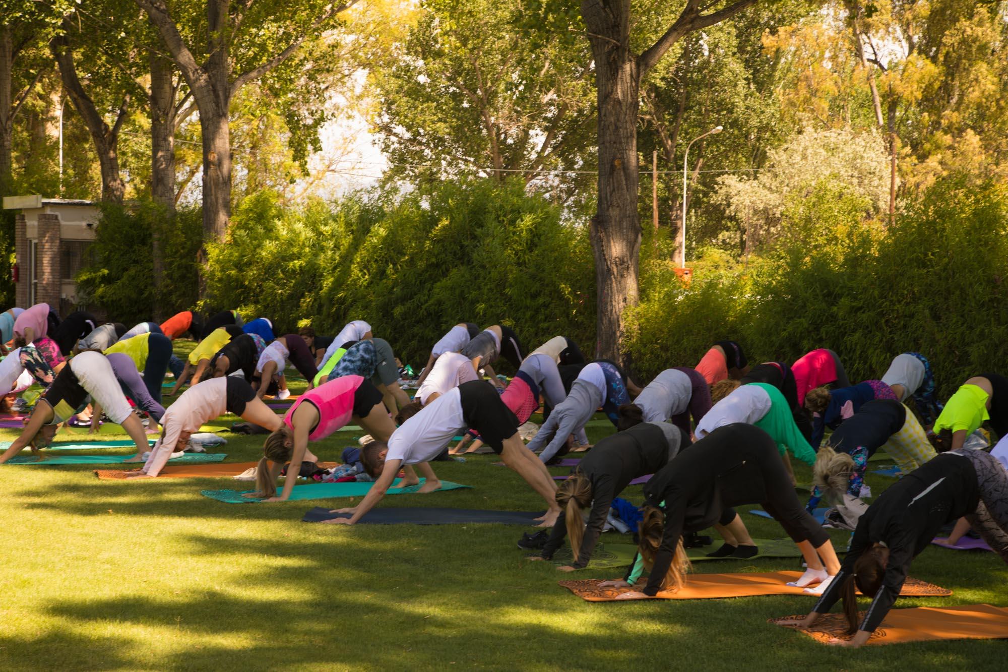 yoga-por-los-caminos-del-vino_7X1A9294