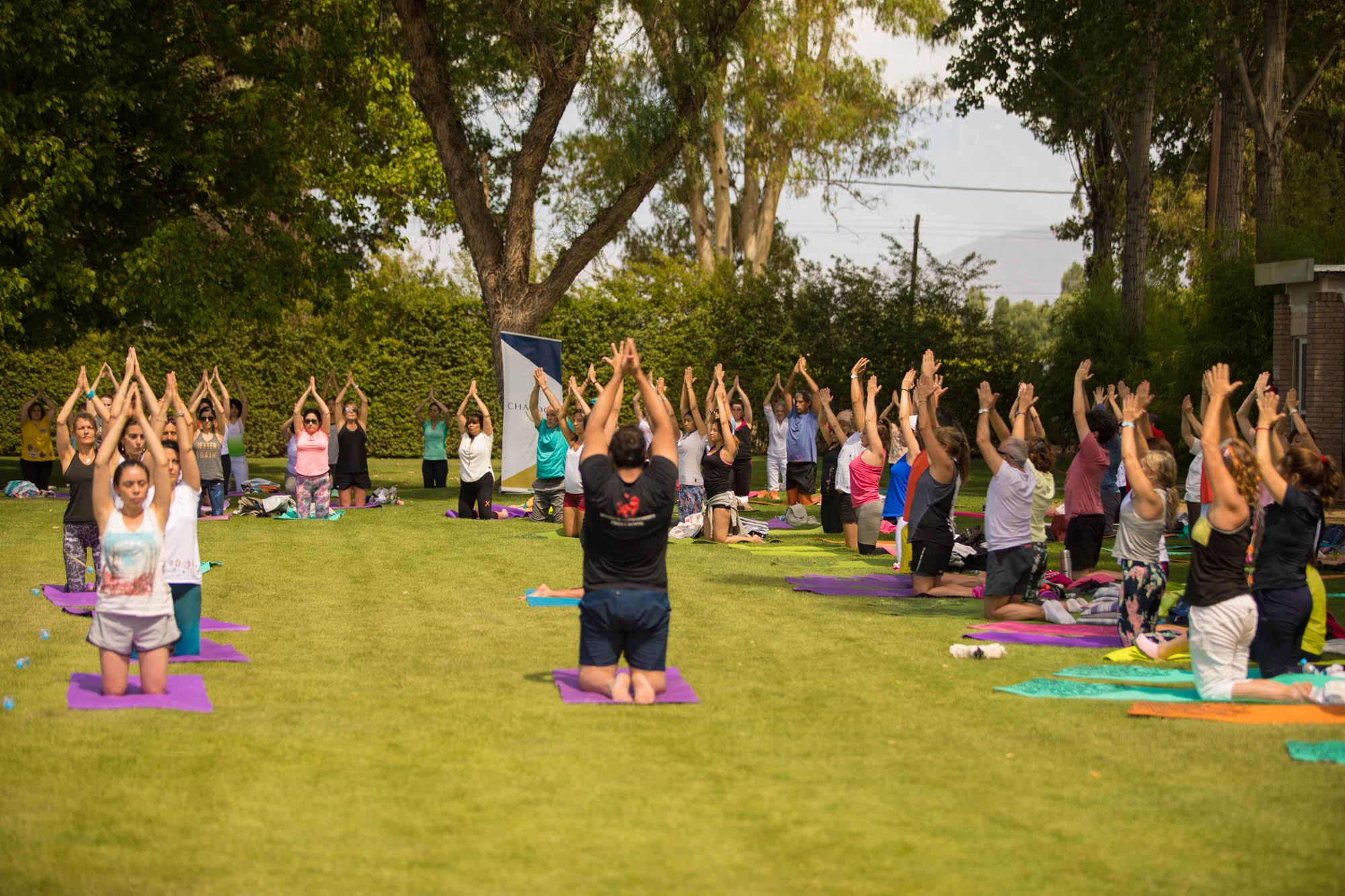 yoga-por-los-caminos-del-vino_7X1A9578